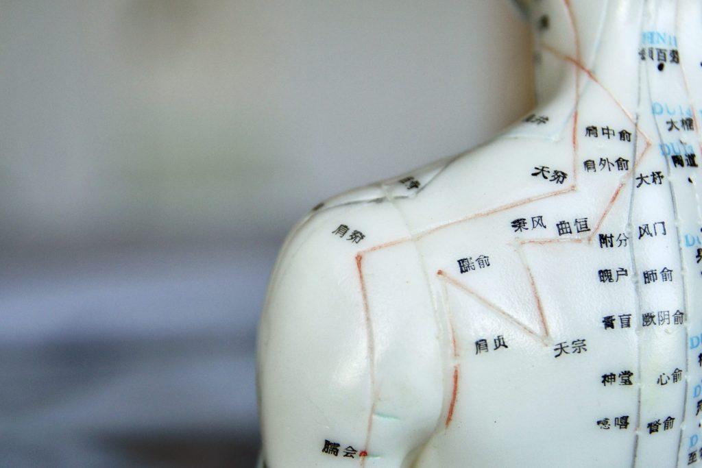Akupunkturmodell